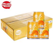 屯河杏汁礼盒装 250ml*10