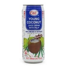 PW椰子味饮料500ML*24