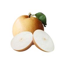 Y 秋月梨(7-10头/约4.5kg)